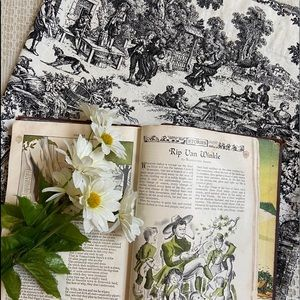 French toile pastoral print single curtain